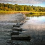 Stepping Stones - Psychotherapy London